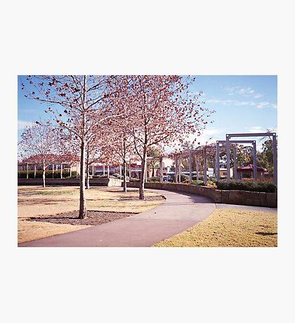 Small Town Australia Photographic Print
