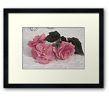 Pink Begonias And Their Leaves Framed Print
