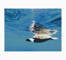SEA TURTLE & SEAHORSE One Piece - Short Sleeve