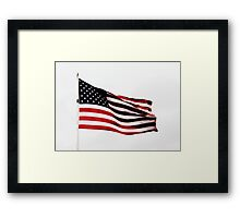 USA Flag Framed Print