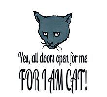 Yes, all doors open for me, FOR I AM CAT! Photographic Print