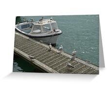 Boat Gulls  Greeting Card