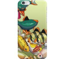 Barbs iPhone Case/Skin