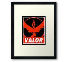 Valor Colored Bar Framed Print
