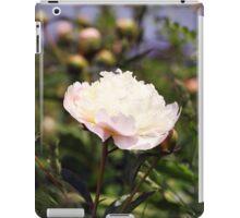Garden Scene-800567 iPad Case/Skin