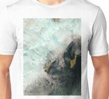 Satellite Image Catalina and San Clemente Islands California Unisex T-Shirt