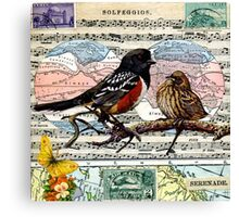 Solfeggios: Birds and Music Collage Canvas Print