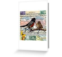Solfeggios: Birds and Music Collage Greeting Card
