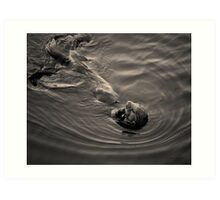 Sea Otter III Toned Art Print