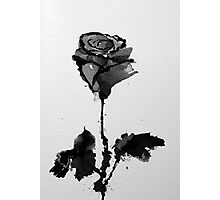 Carly's Rose Photographic Print
