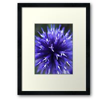 Round, Blue Flower Framed Print
