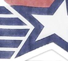 USA Olympic Drinking Team Sticker
