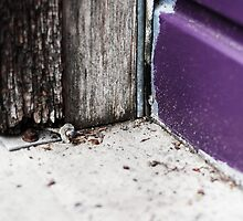 { Corners: where the walls meet #14 } by Lucia Fischer
