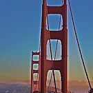 Golden Gate by Tracy Freese