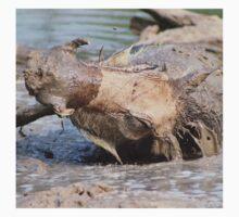 Warthog - African Wildlife Background - Healing Mud Bath Kids Clothes