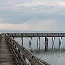 Oasi Naturalistica La Valle, Lago Trasimeno, Umbria, Italy by Andrew Jones