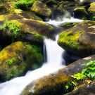 Spring Water Flowing Over Moss Rocks by KellyHeaton