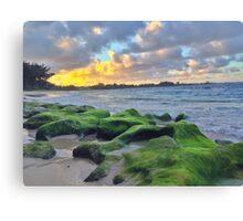 North Shore Oahu Canvas Print