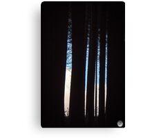 Sugar Pine Walk in Winter Canvas Print
