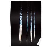 Sugar Pine Walk in Winter Poster
