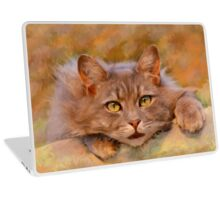Cute Brown Cat Watercolor Oil Painting Art Laptop Skin