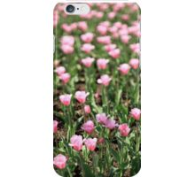 field  pink tulips iPhone Case/Skin