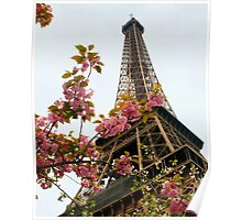 Blooming Beauties In Paris Poster