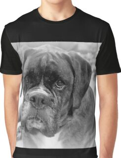 Contemplating My New Years Resolution ~ Boxer Dogs Series Graphic T-Shirt