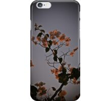 Geraldton iPhone Case/Skin