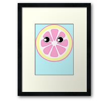 Citrus Slice Framed Print
