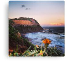 Newcastle Australia Canvas Print
