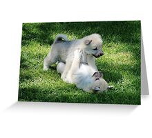 Playful Puppies Wrestling Greeting Card
