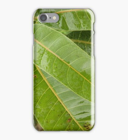 Rainforest Leaves iPhone Case/Skin