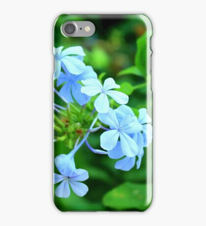 Macro Blue Flowers iPhone Case/Skin