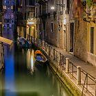 Venice evening by Vicki Moritz