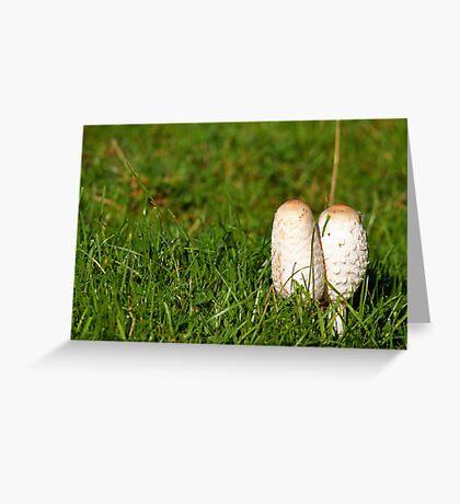 Ink cap fungi Greeting Card