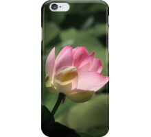 Indian lotus iPhone Case/Skin
