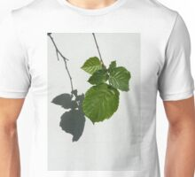 Sophisticated Shadows - Glossy Hazelnut Leaves on White Stucco - Vertical View Down Left  Unisex T-Shirt