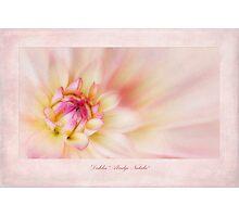 Dahlia Abridge Natalie Photographic Print