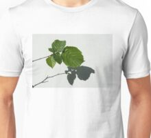 Sophisticated Shadows - Glossy Hazelnut Leaves on White Stucco - Horizontal View Right Upwards Unisex T-Shirt