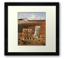 Three kittens adventure Framed Print