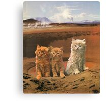 Three kittens adventure Canvas Print