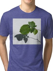 Sophisticated Shadows - Glossy Hazelnut Leaves on White Stucco - Horizontal View Left Upwards Tri-blend T-Shirt