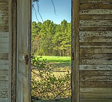 When One Door Closes, Another Opens by Susan Nixon