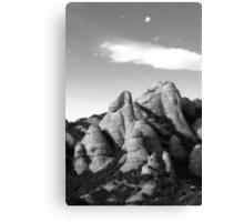 mountain top Canvas Print