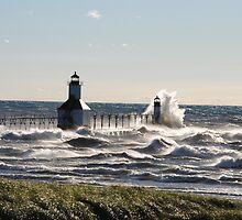 St Joseph North Pier Lighthouse - 52 by Debbie Mueller