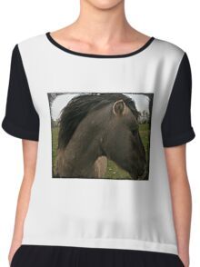 Netherland Pony Chiffon Top