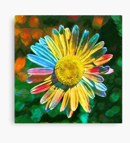 Rainbow Daisy Flower Canvas Print