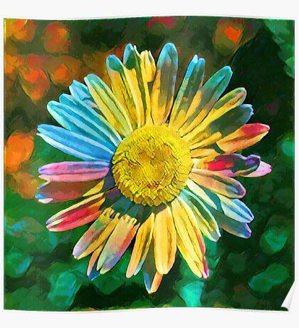 Rainbow Daisy Flower Poster