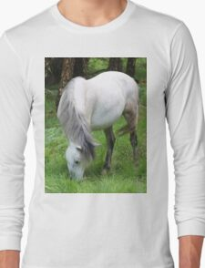 The grey mare Long Sleeve T-Shirt